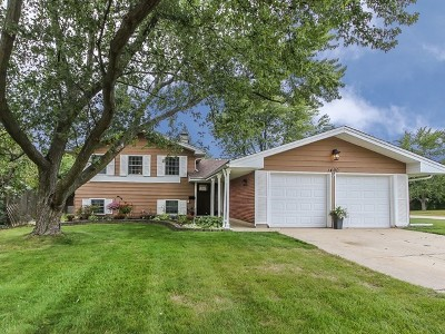 Hoffman Estates Single Family Home For Sale: 1400 Mayfield Lane