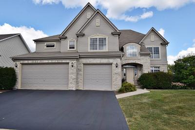 Geneva Single Family Home For Sale: 38w472 McQuire Place