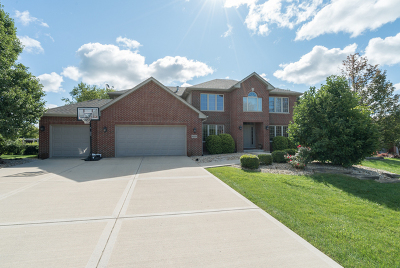Lockport Single Family Home For Sale: 16235 West Blackhawk Drive