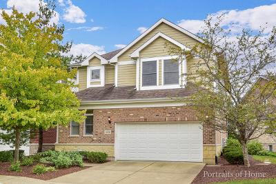 Lisle Single Family Home For Sale: 1229 Lake Shore Drive