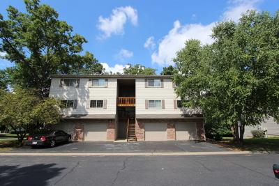 Carpentersville Condo/Townhouse Contingent: 614 Buckskin Lane