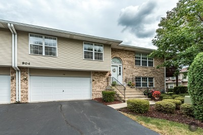 Naperville Condo/Townhouse For Sale: 904 Elderberry Circle #116