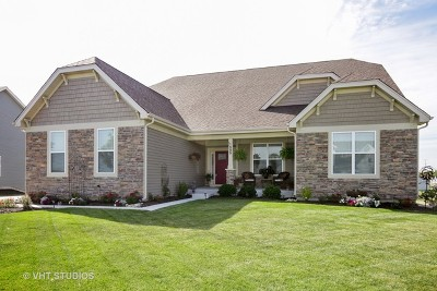 Aurora Single Family Home For Sale: 1505 Star Grass Circle