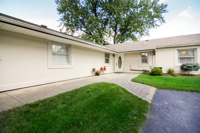 Bolingbrook Single Family Home For Sale: 132 Seabury Road