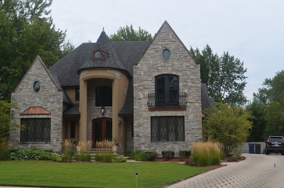 Naperville Single Family Home For Sale: 356 Sycamore Drive