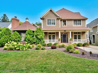 Glen Ellyn Single Family Home For Sale: 704 Highview Avenue