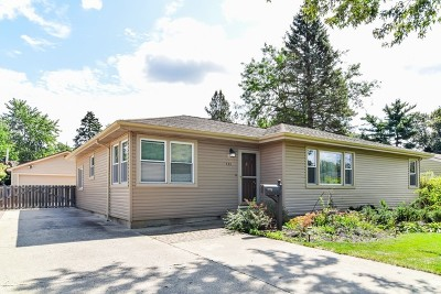 South Elgin Single Family Home Contingent: 195 Ann Street