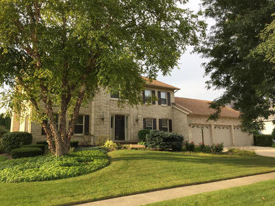Elgin Single Family Home For Sale: 1995 Salem Road