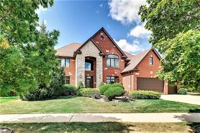 Orland Park Single Family Home For Sale: 15516 Scotsglen Road