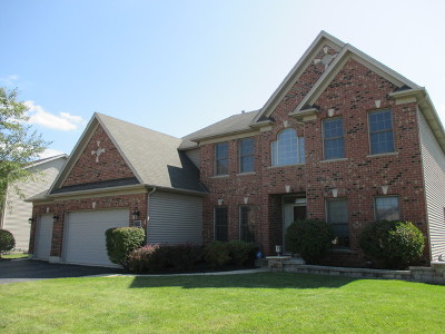 Plainfield Single Family Home For Sale: 25709 West Sunnymere Drive