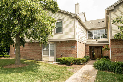 Schaumburg Condo/Townhouse For Sale: 1741 Eastwood Court #9