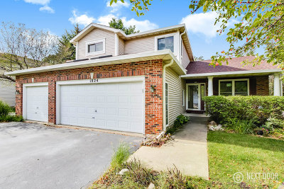Bolingbrook Single Family Home For Sale: 1824 Red Bud Road
