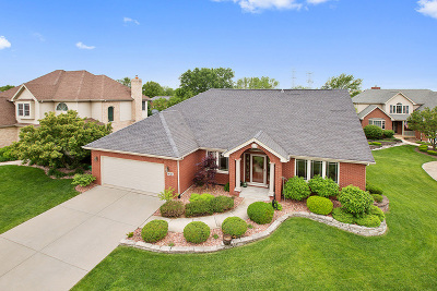 Homer Glen Single Family Home For Sale: 14324 Surrey Court