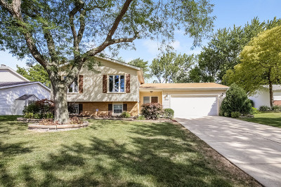 Darien Single Family Home For Sale: 1022 Hinsbrook Avenue
