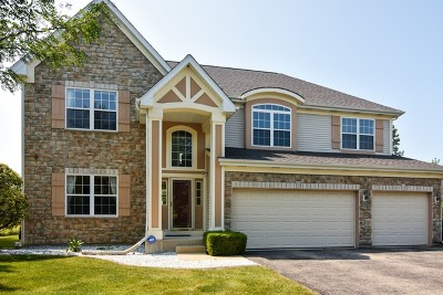 Long Grove Single Family Home For Sale: 8070 Vail Court