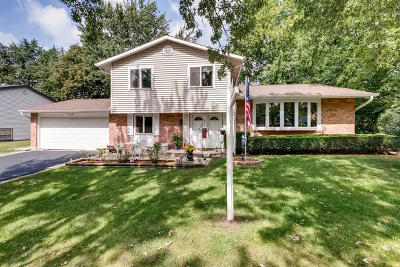 Bolingbrook Single Family Home For Sale: 8 Vermont Circle