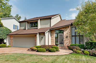 Wheaton Single Family Home For Sale: 131 White Oak Drive