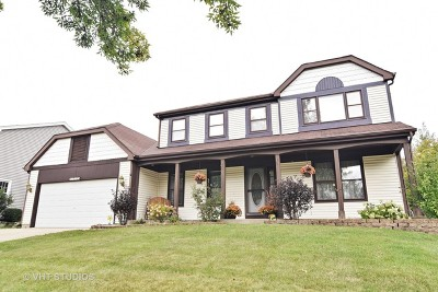 Schaumburg Single Family Home For Sale: 1712 Green River Drive