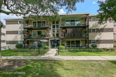 La Grange Condo/Townhouse Contingent: 925 8th Avenue #2