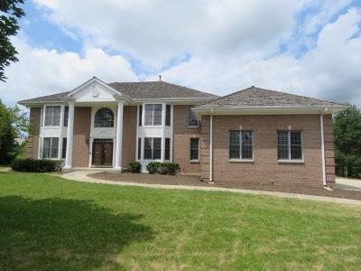 Long Grove Single Family Home For Sale: 1373 Bridgewater Lane