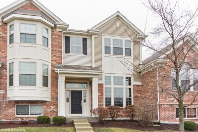 Winfield Condo/Townhouse Contingent: 0n053 Forsythe Court