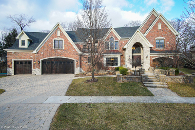 Naperville Single Family Home For Sale: 1088 Johnson Drive
