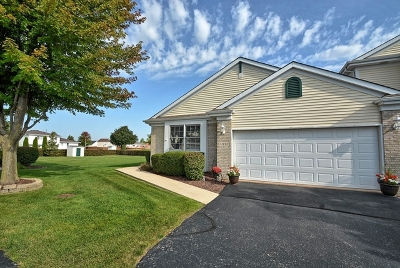 Lockport Condo/Townhouse Contingent: 17232 Long Bow Drive