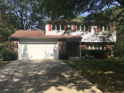 Wheaton Single Family Home For Sale: 2s521 Seneca Drive
