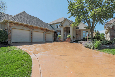 Naperville Single Family Home For Sale: 3595 Scottsdale Circle