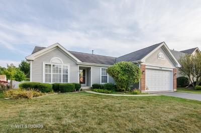 Carpentersville Single Family Home For Sale: 5706 Breezeland Road