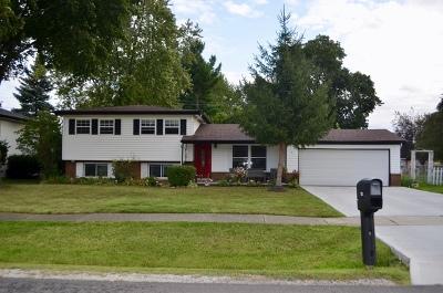 Roselle Single Family Home For Sale: 721 Sunnyside Road