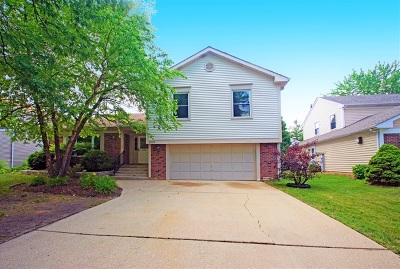 Bolingbrook Single Family Home For Sale: 1006 Churchill Drive