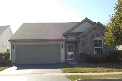 Elgin Single Family Home For Sale: 2571 Venetian Lane