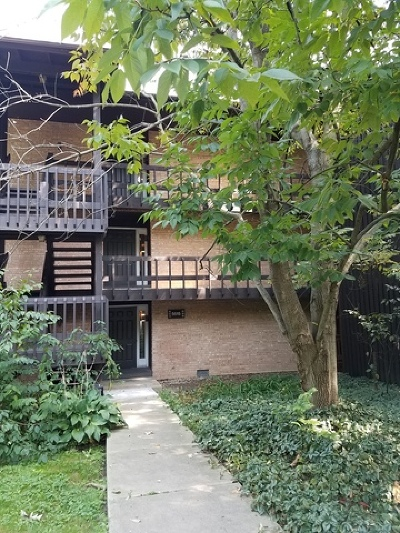 Lisle Condo/Townhouse Contingent: 5515 Lakeside Drive #2C