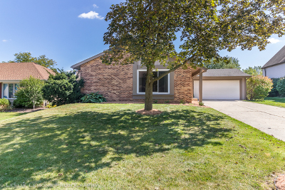 Lisle Single Family Home For Sale: 6515 Deerpath Court