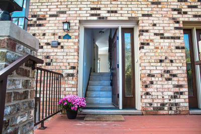 Lake Zurich Condo/Townhouse For Sale: 753 North Old Rand Road