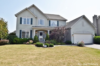 West Dundee Single Family Home For Sale: 1145 Fox Path