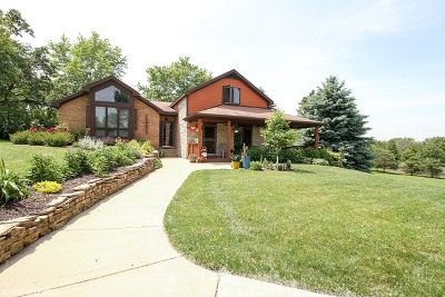 Frankfort Single Family Home For Sale: 10118 West Steger Road