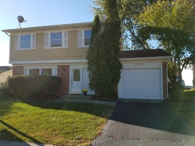 Hoffman Estates Single Family Home For Sale: 1425 Westbury Drive
