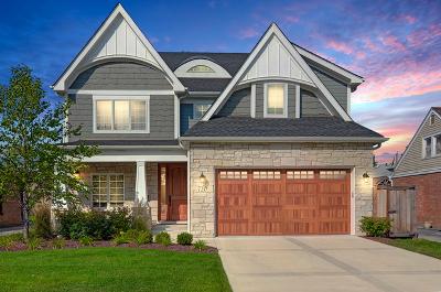 La Grange Single Family Home Price Change: 720 9th Avenue