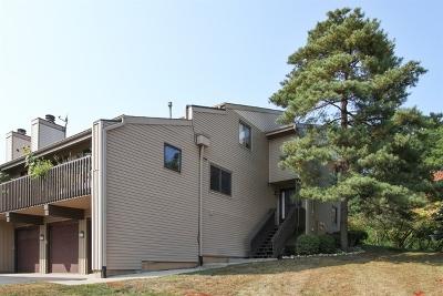 Fox Lake Condo/Townhouse For Sale: 28 Mineola Road #6