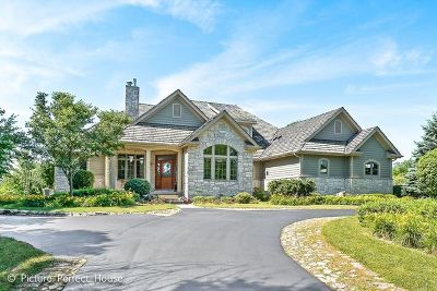 Plainfield Single Family Home For Sale: 16420 South River Road