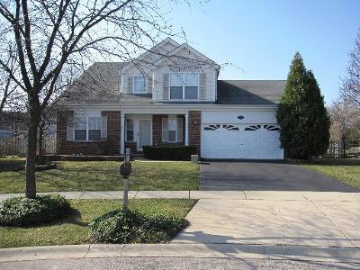 Carpentersville Single Family Home For Sale: 804 Dover Circle