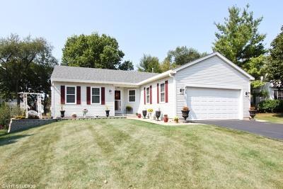 Cary Single Family Home For Sale: 436 Hampton Street