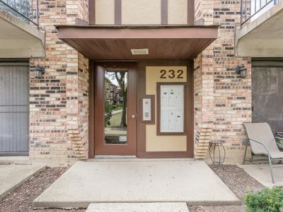 Carol Stream Condo/Townhouse For Sale: 232 Klein Creek Court #F