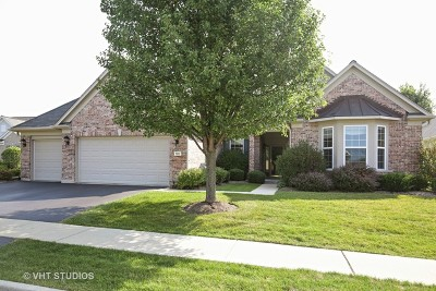 Elgin Single Family Home For Sale: 599 Cardinal Cove Court