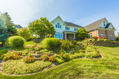 Carpentersville Single Family Home For Sale: 3401 Green Pastures Road