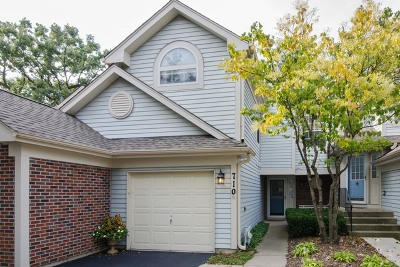 Elgin Condo/Townhouse For Sale: 710 Shady Oaks Court