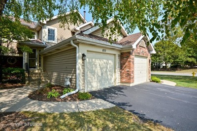 Carol Stream Condo/Townhouse For Sale: 1071 Rockport Drive #1071