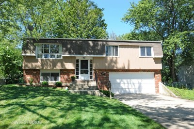 Wheaton Single Family Home For Sale: 2000 Nottingham Lane